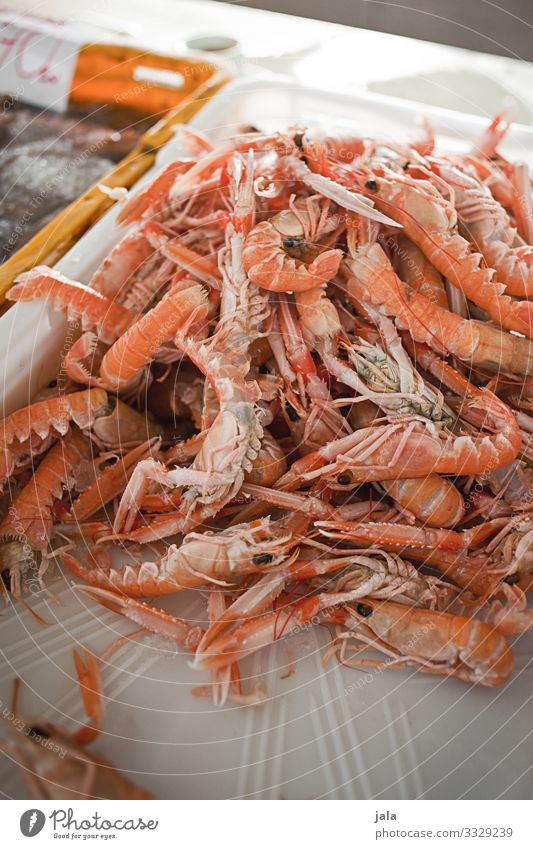 scampis Food Seafood Crustacean Shrimps Shopping Animal Fresh Healthy Delicious Markets Market stall Fish market Protein Healthy Eating Colour photo