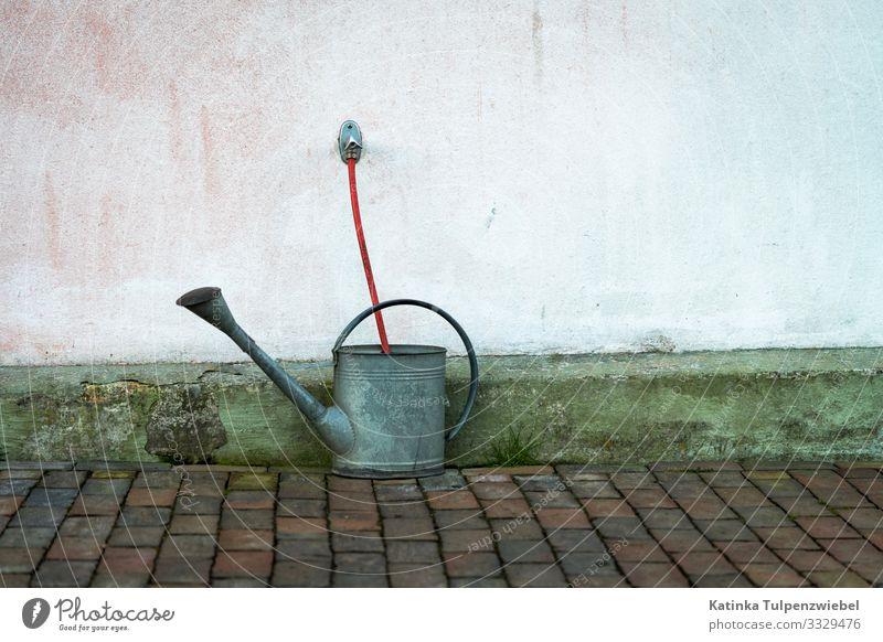 Gießkanne wird mit Wasser aufgefüllt Stone Metal Authentic Garden Drinking water Summer Dry Watering can Hose Garden hose Wall (building) Red Tap Colour photo