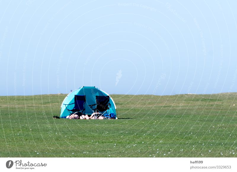 Sunbathing on green meadow with folding chair and wind shell Beach Human being 2 Landscape Cloudless sky Summer Beautiful weather Grass Meadow Lawn Lakeside