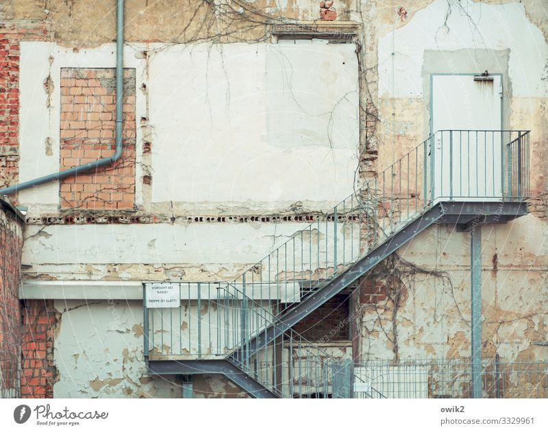 chicken ladder torgau Saxony Germany Small Town Downtown House (Residential Structure) Building Wall (barrier) Wall (building) Facade Door Eaves Stairs Banister