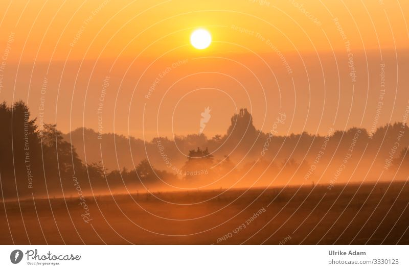 Fog Impressions Wellness Harmonious Well-being Contentment Relaxation Calm Meditation Spa Wallpaper mourning card Funeral service Environment Nature Landscape