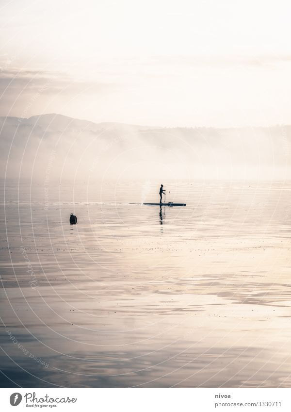 Stand up Paddling Stand Up Paddleboarding stand up Lake zurich winter Exterior shot Water Day Reflection Nature 1 Misty atmosphere Fog nice weather