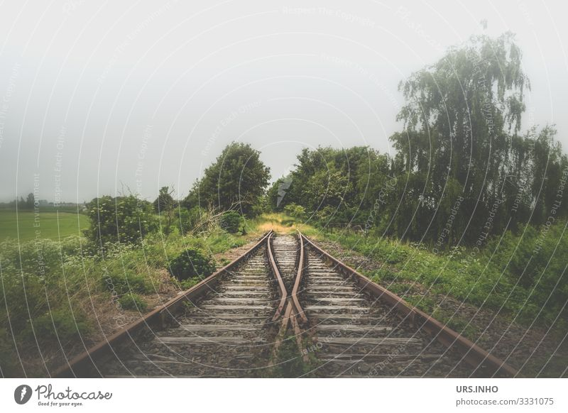 Tracks end in nowhere Nature Landscape spring Summer Bad weather Fog Plant tree bushes Meadow Field Traffic infrastructure Rail transport Railroad tracks Switch