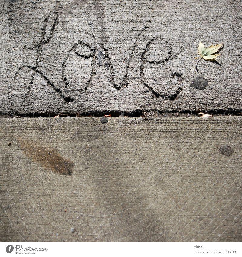 Town Leaf Street Life Love Lanes & trails Emotions Time Art Moody Line Creativity Joie de vivre (Vitality) Romance Concrete Construction site