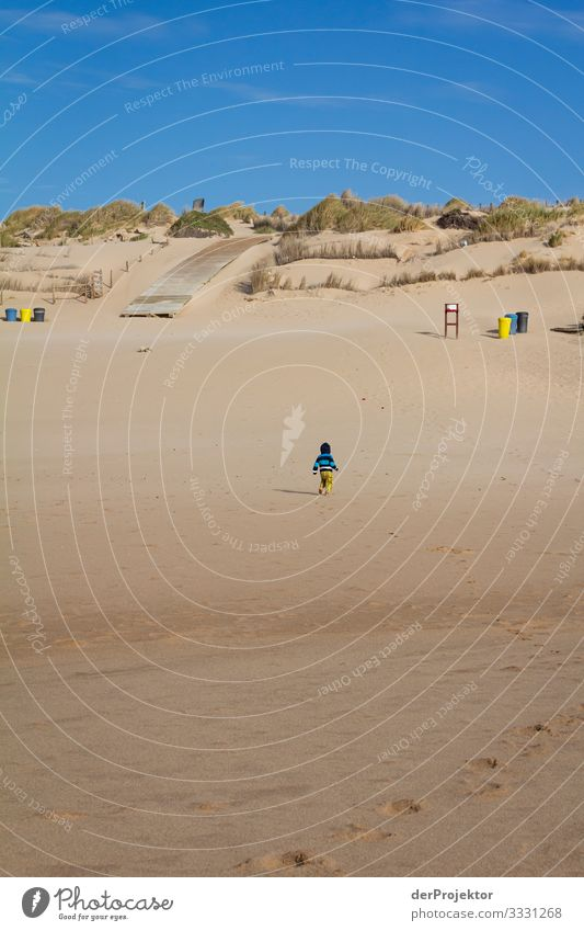 Lonely on the beach in the Alentejo Vacation & Travel Tourism Trip Adventure Far-off places Freedom Summer vacation Beach Hiking Environment Waves Coast Ocean