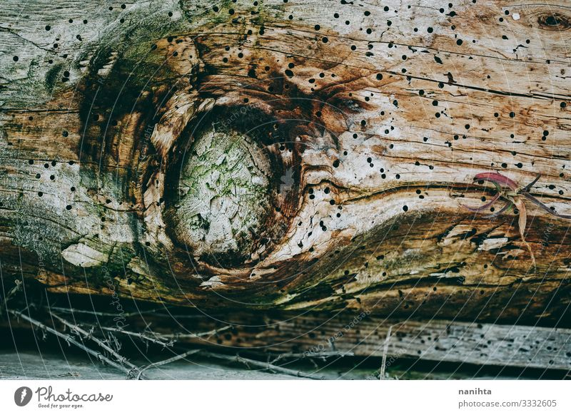 Old and grunge wooden texture Wallpaper Nature Tree Wood Rust Faded Authentic Cool (slang) Retro Colour Consistency Surface Grunge broken vintage filter