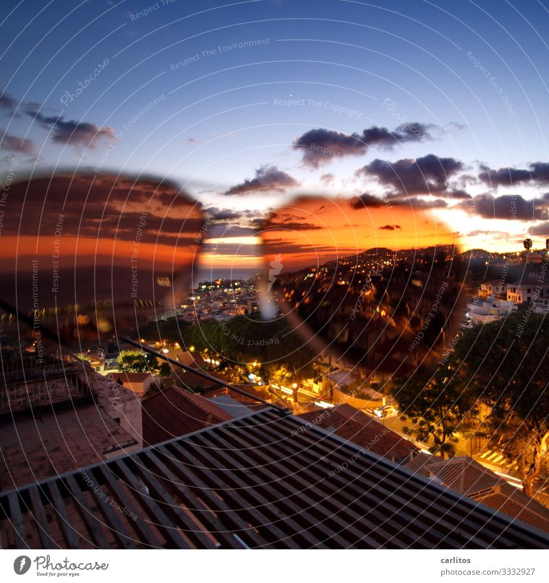 Funchal   Golden times Portugal Madeira Capital city Old town Panorama (View) Vantage point Light Night Dusk Sunglasses Spring Tourism Senior citizen old part