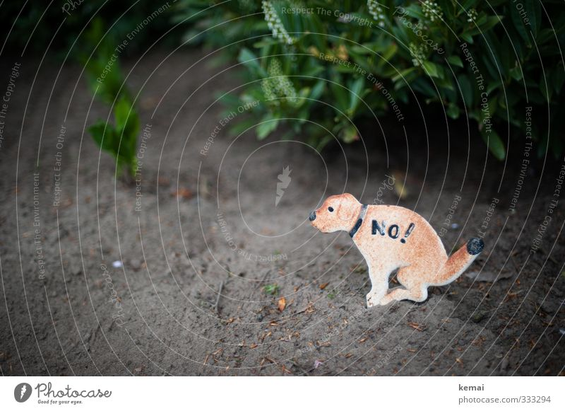 Helgiland No! Nature Earth Foliage plant Garden Sign Signs and labeling Signage Warning sign Dog Sit Bans Clean Defecate bequest heap of dogs Colour photo