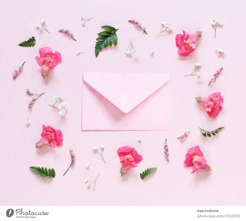 Flowers and pink envelope on a light pink background Design Decoration Wedding Woman Adults Mother Above Pink Creativity flat lay romantic Conceptual design