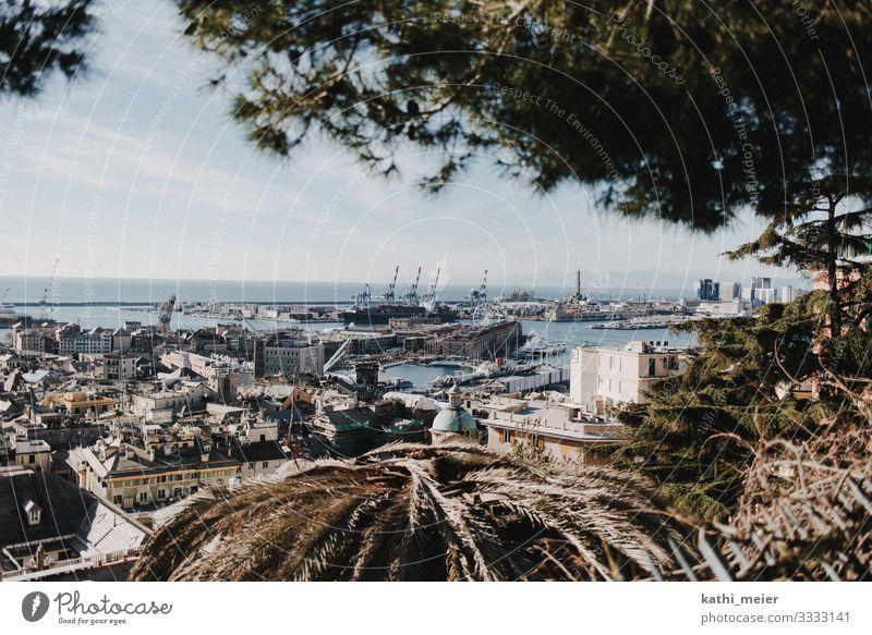 View of Genoa in January Genua Port City Harbour Europe coast vacation Town Panorama (View) Outskirts Vantage point Exterior shot City trip Sightseeing Skyline
