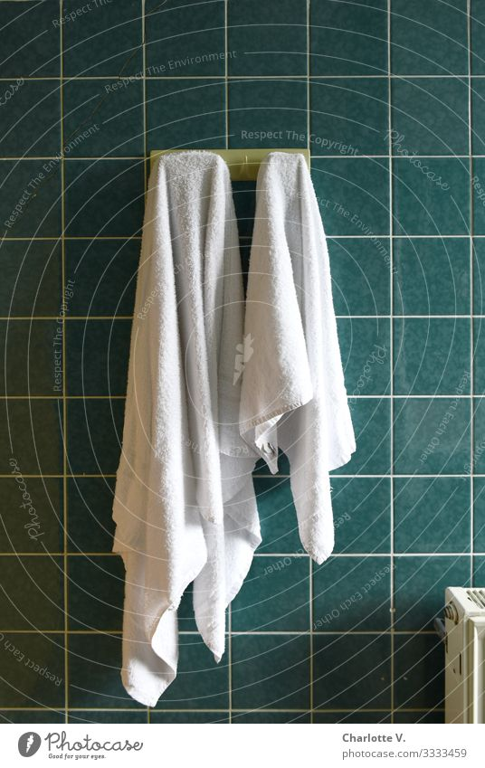 Order - two white towels hang neatly side by side on hooks on a dark green tiled wall Lifestyle Personal hygiene Living or residing Flat (apartment) Bathroom