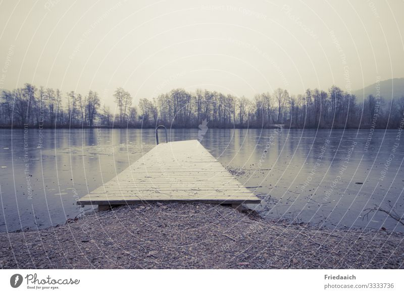 jetty at the lake Nature Landscape Earth Water Sky Winter Tree Lakeside Breathe Advice Movement Relaxation Walking Cold Wet Natural Attentive Calm Life Ease