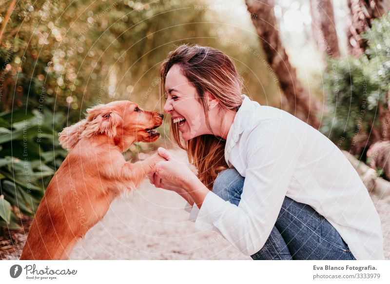 young woman and her cute puppy of cocker spaniel outdoors in a park Woman Dog Pet Park Sunbeam Exterior shot Love Embrace Smiling Kissing Breed Purebred