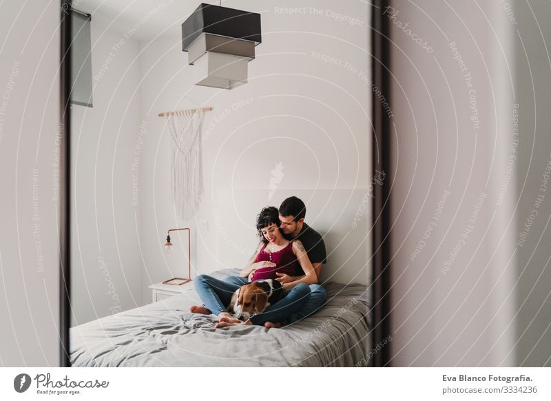 young couple at home hugging. Happy Pregnant woman smiling. cute beagle dog besides Couple Love Woman Parents expecting Home Sofa Embrace Kissing parenthood