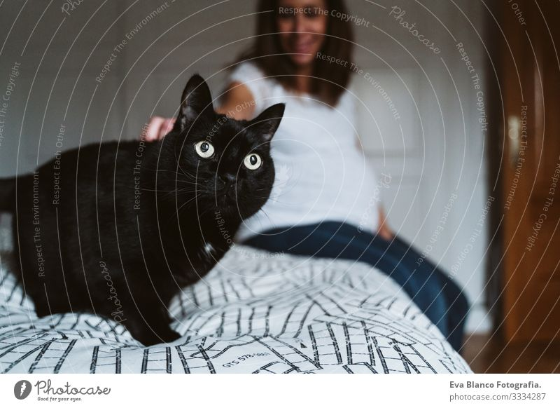young pregnant woman at home. beautiful black cat besides Pregnant Woman Youth (Young adults) pregnancy Home maternity Life Showing one's bellybutton Relaxation