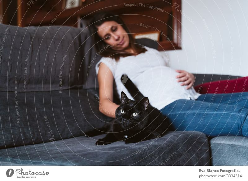 young pregnant woman at home with her black cat resting on the sofa Pregnant Woman Youth (Young adults) Home Life Showing one's bellybutton Relaxation