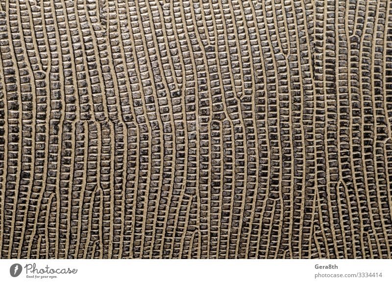texture of brown leather surface macro closeup Leather Brown background blank detailed skin background skin pattern skin texture Consistency Close-up