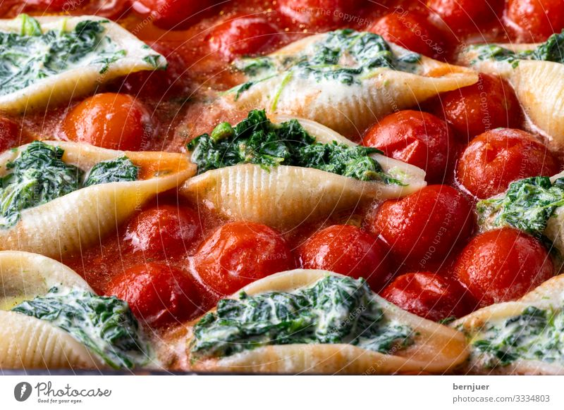 Conchiglini Cheese Vegetable Herbs and spices Dinner Vegetarian diet Mussel Delicious Green Red White Conchiglione Shell noodle pasta Noodles filled Italian
