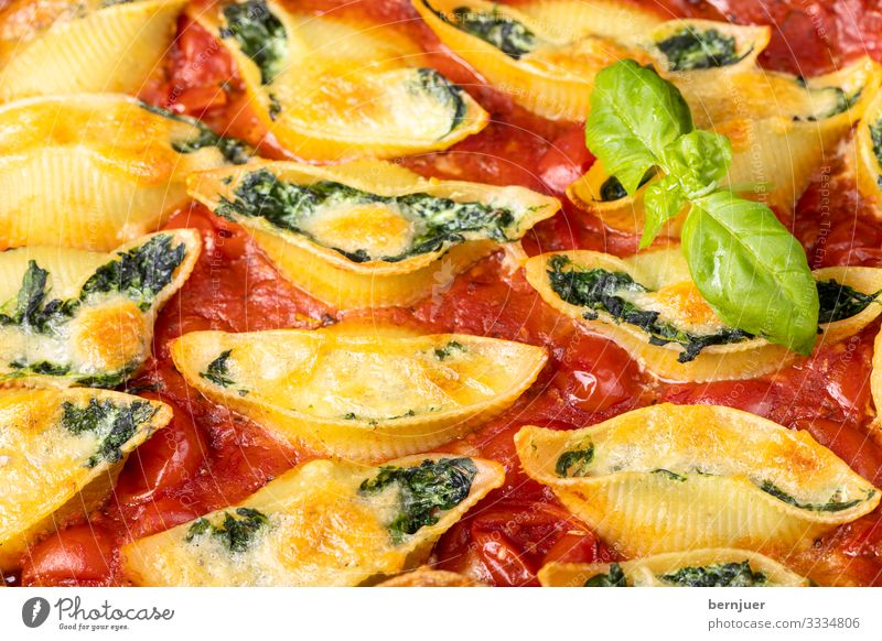 Conchiglini Cheese Vegetable Herbs and spices Dinner Vegetarian diet Mussel Fresh Delicious Green Red White Conchiglione pasta filled Italian boil Sauce Ricotta