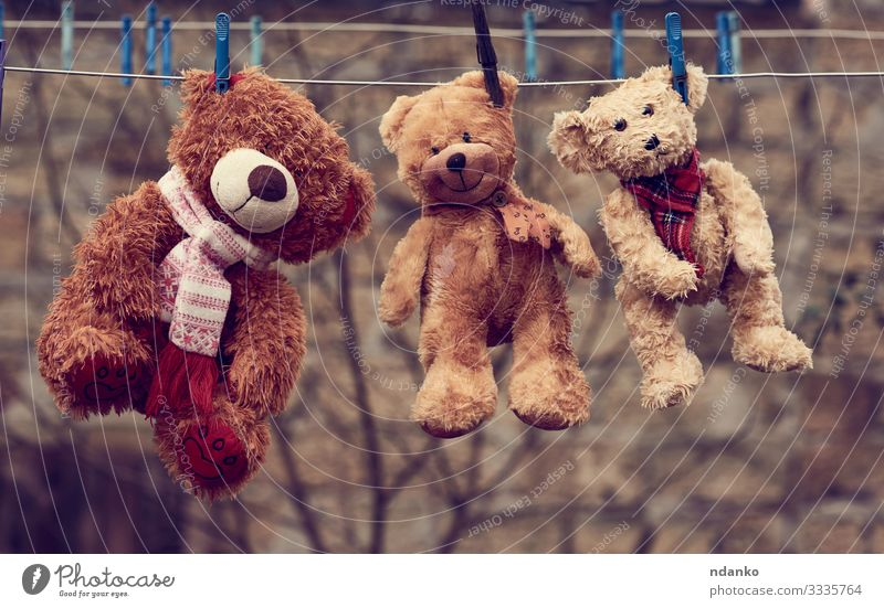 three cute brown wet teddy bears Joy Playing Child Rope Baby Infancy Nature Animal Toys Doll Teddy bear Line Hang Small Wet Cute Soft Blue Brown Together wash