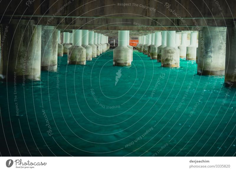View under the bridge with many concrete piers. The water is turquoise. Style Harmonious Trip Bridge construction Environment Summer Beautiful weather River