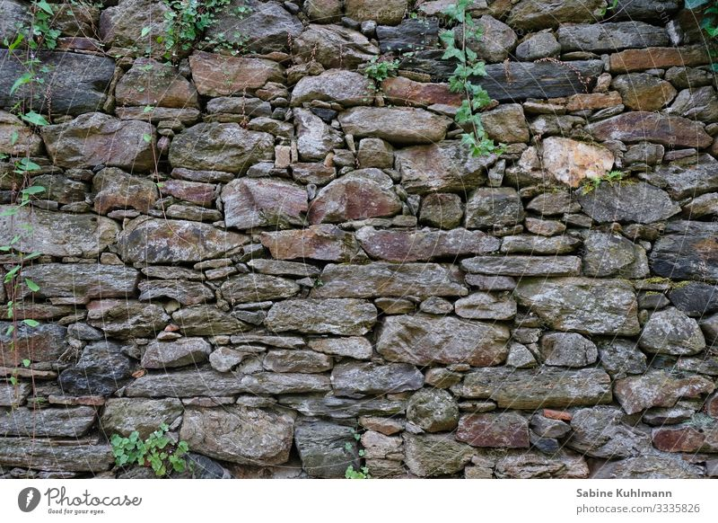 A stone wall Manmade structures Wall (barrier) Wall (building) Facade Stone Old Firm Gray Protection Subdued colour Exterior shot Deserted Copy Space left