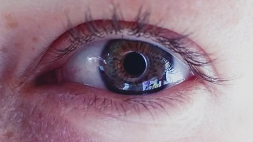 Auge, Wimpern , mit Spiegelung Portrait photograph Colour photo Nature Beautiful beautifull Tag Lifestyle Feminine Charming Style