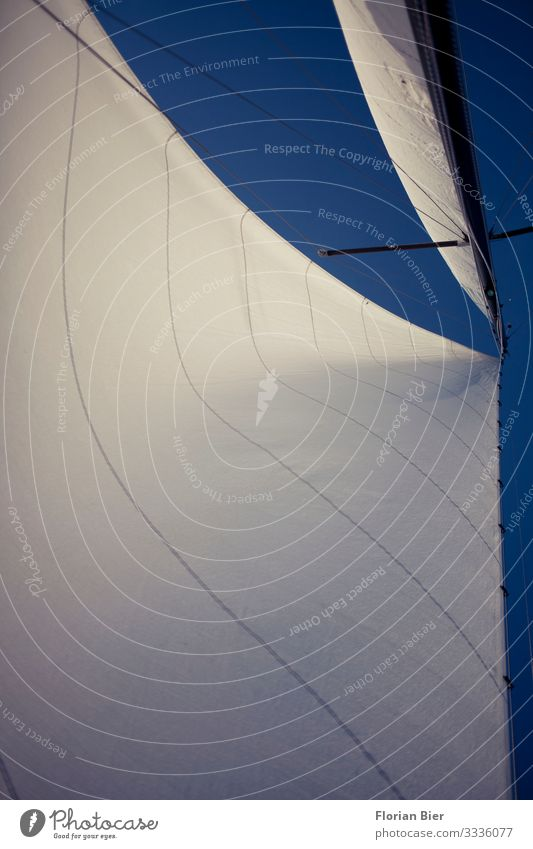 Hard on the wind Luxury Sky Climate change Sailboat Mast Driving Dream Esthetic Far-off places Large Bright Tall Maritime Clean Blue White Enthusiasm Brave