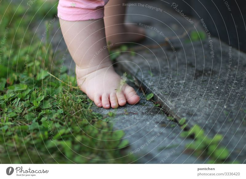 Baby feet on cobblestones and grass Child Toddler Girl Boy (child) Feet 1 Human being 0 - 12 months 1 - 3 years Going Stand Terrace Meadow Nature Curiosity