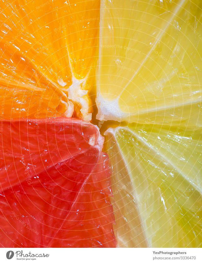 Citrus fruit section mix. Details of summer fruit. Fruit Orange Fresh Multicoloured above view cheerful Citrus fruits citrus mix colorful Conceptual design
