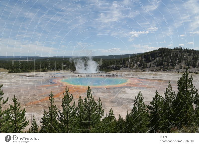 yellowstone national park the nature Swimming pool Vacation & Travel Tourism Mountain Nature Landscape Park Forest Volcano Hot Natural Yellowstone National Park
