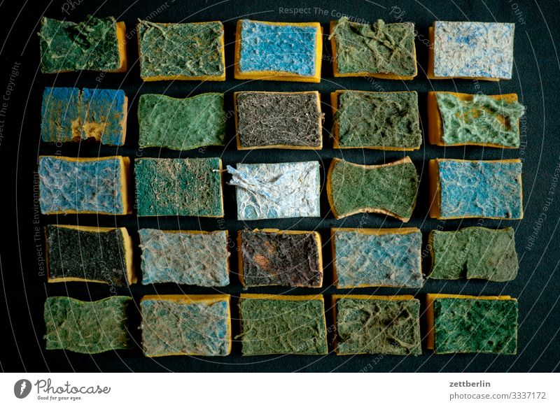 Sponges Gradation Quantity Divide Household Personal hygiene Clean Body care tools mass Material Crowd of people Deserted Arrangement Cleaning Cleaner Row