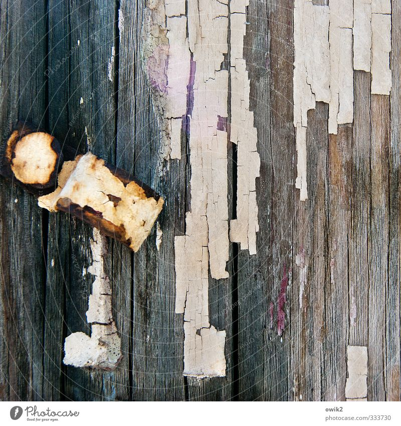 Clip type Wood Metal Old Simple Trashy Bizarre Colour Transience Change Destruction Paint traces Part Flake off Crack & Rip & Tear Tracks Wood grain Rust