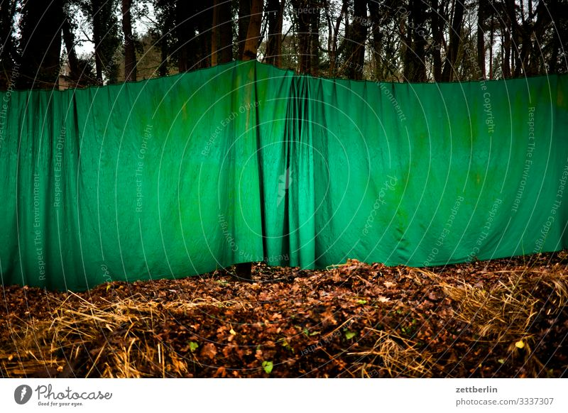 Green curtain in the forest Trip Berlin Brandenburg new fahrland Forest Nature Hiking Drape Wrinkles Folds Closed Invisible Camouflage Blind Partition
