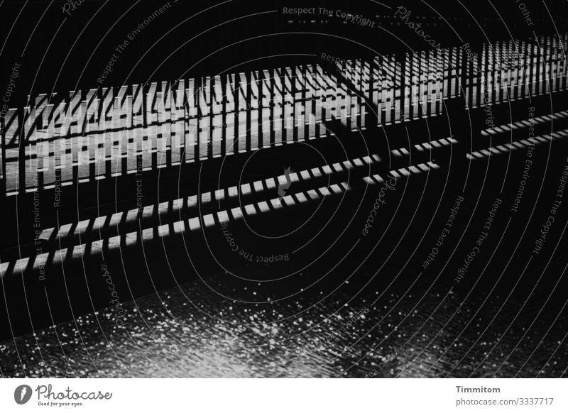 across the bridge Water River Neckar Bridge Transport Metal Line Esthetic Dark Gray Black White Handrail Shadow Black & white photo Exterior shot Deserted Day