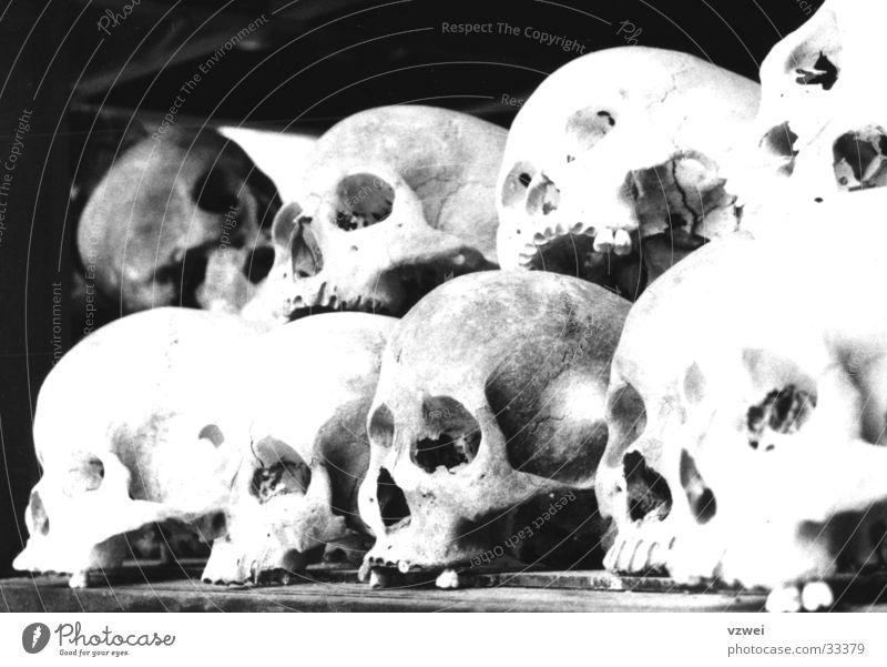 Memorial of inhumanity Beast Mass murder Monument Inhumane Terror Historic Death's head killing fields Murder Black & white photo Cambodia