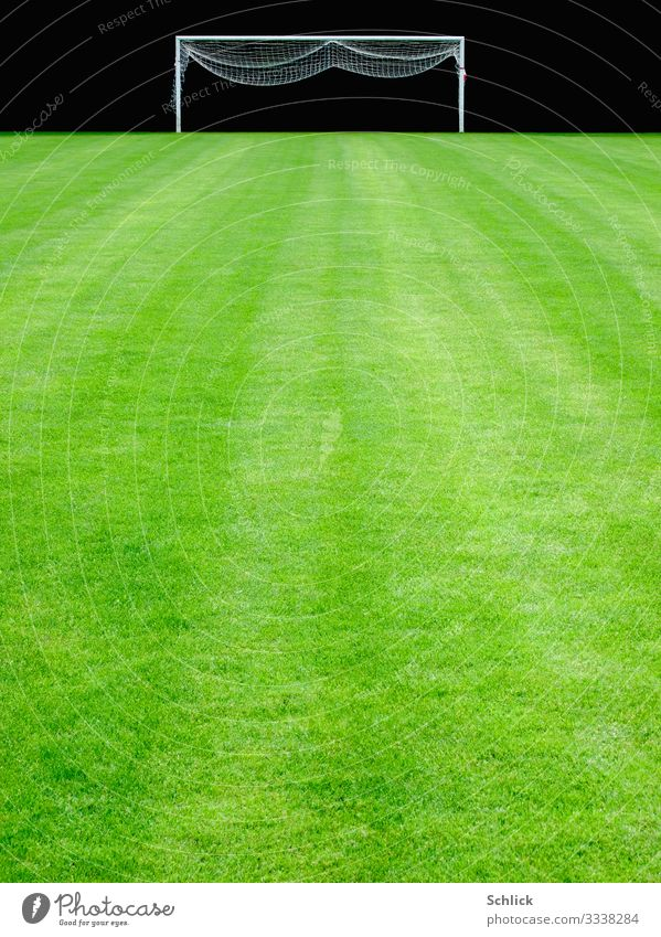 Lawn Sports Ball sports Sporting Complex Football pitch Green Black White Grass surface Goal Net Groomed Deserted Colour photo Exterior shot Copy Space bottom