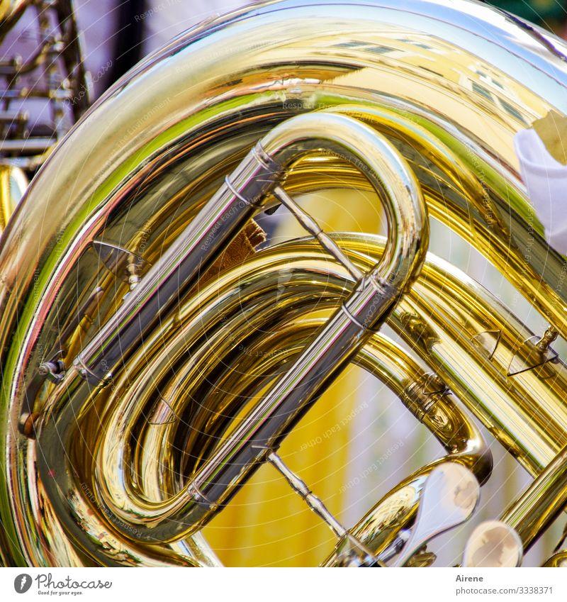 take a deep breath Music Orchestra Cor anglais Wind instrument Brass instrument Brass band Yellow Gold Tin Blow Make music Crash Loud March Parade Rhythm Deep