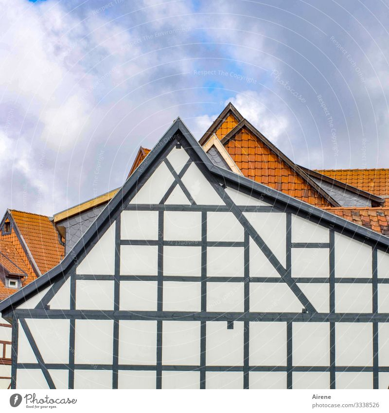 applied geometry Saxony-Anhalt Village Small Town House (Residential Structure) Facade Old Historic Beautiful Triangle At right angles Geometry