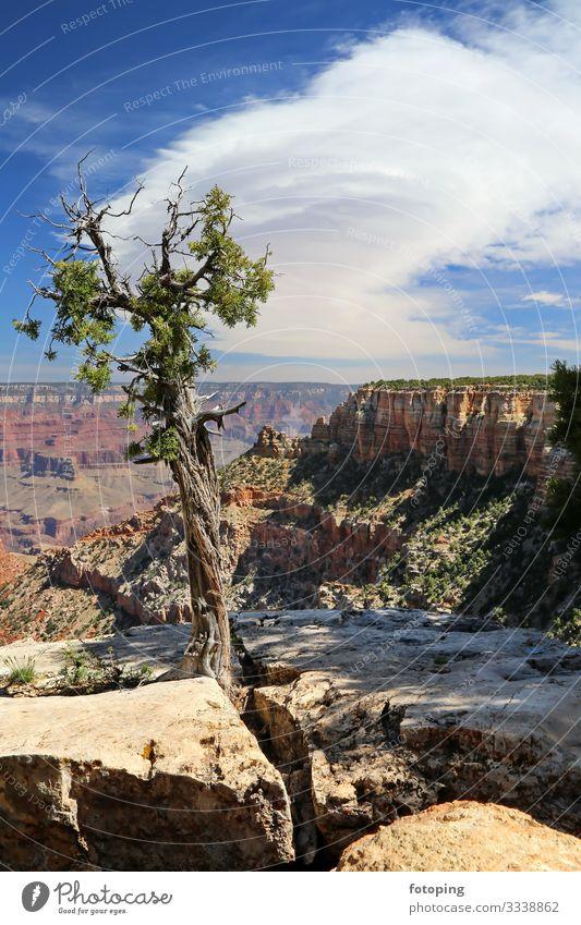 Grand Canyon Beautiful Tourism Trip Adventure Summer Sun Nature Landscape Sand Air Clouds Weather Rock Desert Tourist Attraction Landmark Stone Exceptional