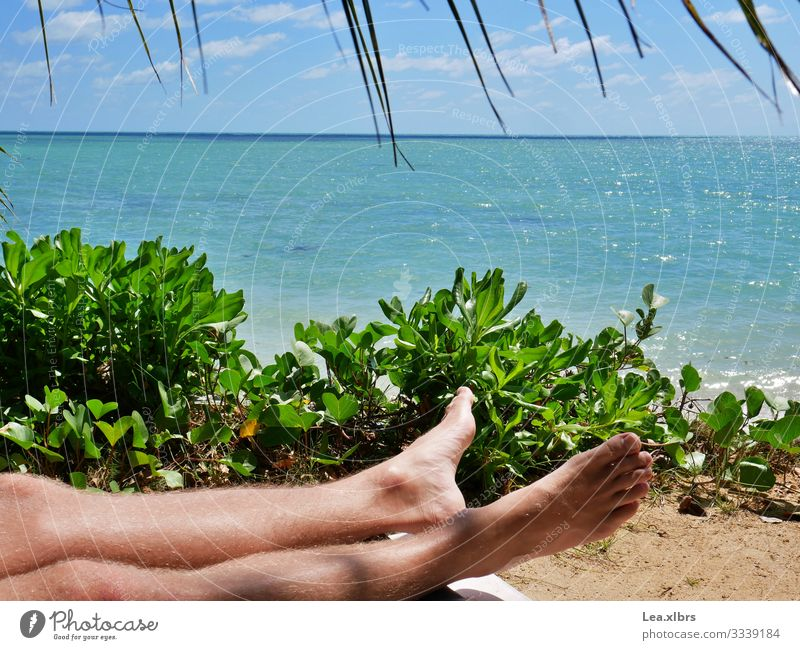 There's only the feet of a man sunbathing on the beach Masculine Young man Youth (Young adults) Legs Feet 1 Human being 18 - 30 years Adults Nature Water Sun