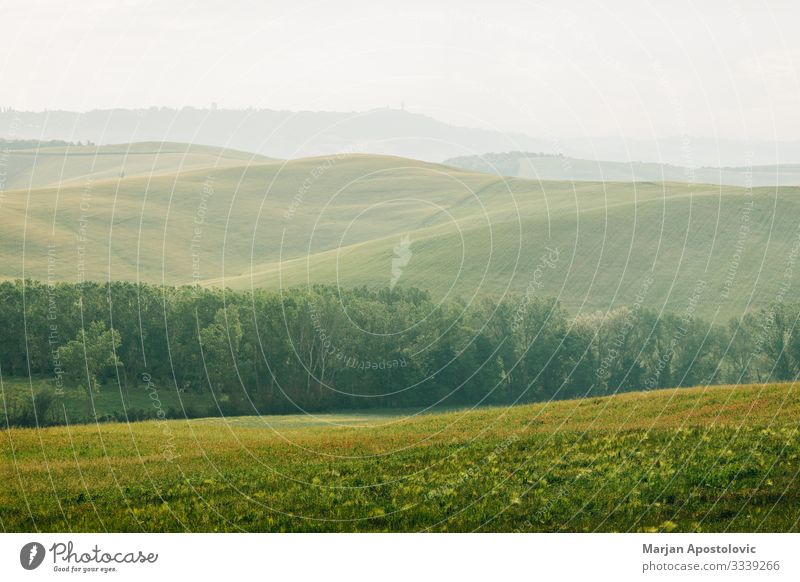 Beautiful countryside landscape in Tuscany, Italy Environment Nature Landscape Plant Earth Horizon Spring Summer Meadow Field Hill Europe Vacation & Travel