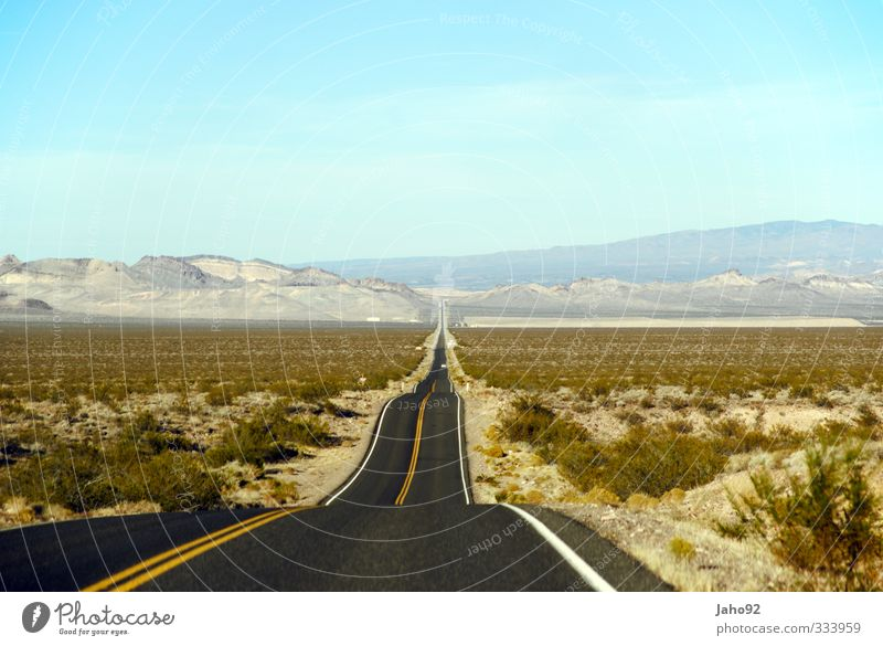 Vacation & Travel Summer Loneliness Landscape Environment Far-off places Street Lanes & trails Transport Tourism Trip Adventure Driving USA Longing Discover