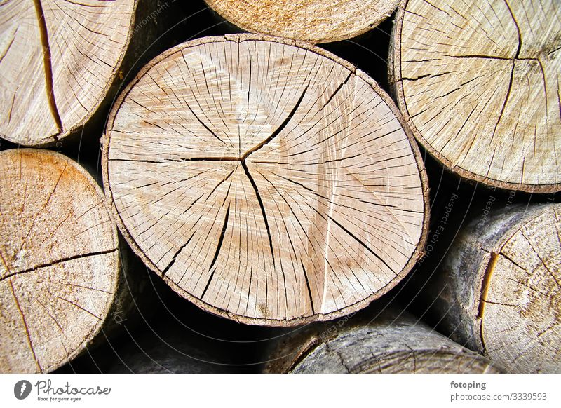 firewood Winter Warmth Forest Wood Sustainability Round Biomass fuel Beech tree Energy Heating Background picture Firewood Stack of wood Annual ring