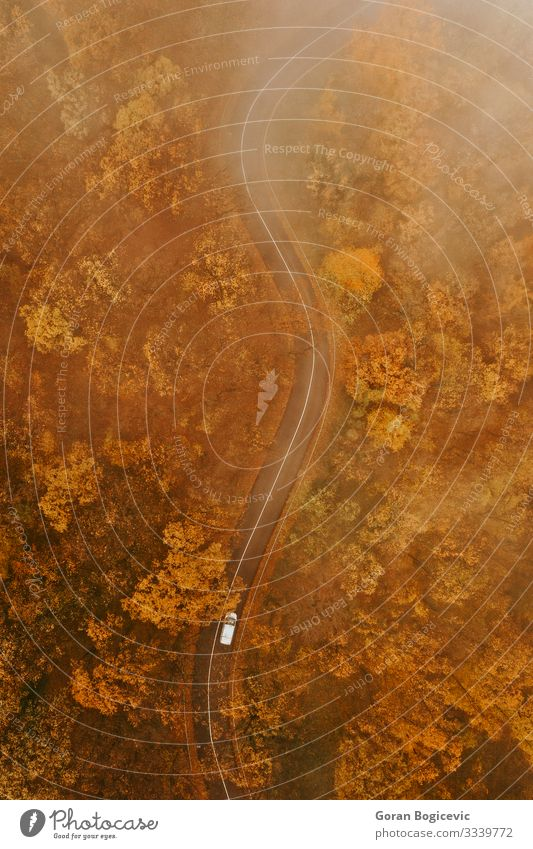 Aerial view of thick forest in autumn with road cutting through Beautiful Vacation & Travel Trip Mountain Nature Landscape Autumn Tree Leaf Forest Transport