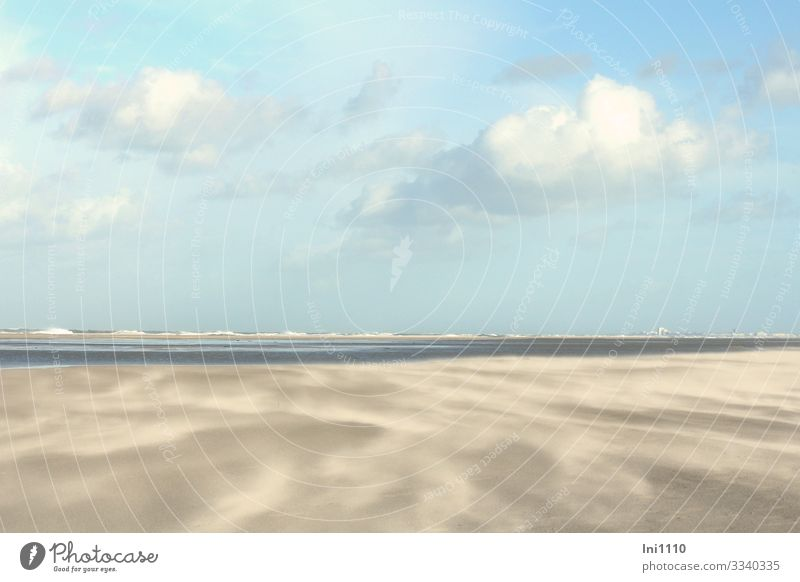 Sand drift on the beach on Juist in good weather with clouds and blue sky Nature Landscape Earth Water Sky Clouds Horizon Autumn Beautiful weather Coast Beach