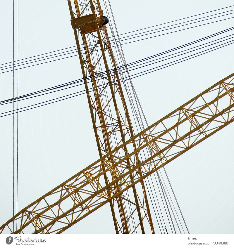 City giraffes (10) Work and employment Workplace Construction site Craft (trade) Sky Crane Metal Line Together Watchfulness Life Endurance Unwavering