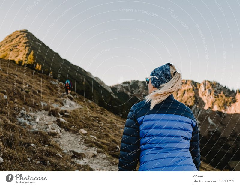 Hiking on the Brecherspitz | Bavaria crusher tip mountain Alps Peak Forest panorama Going Athletic Sports shrubby warm Autumn Green Brown Woman Blue sky