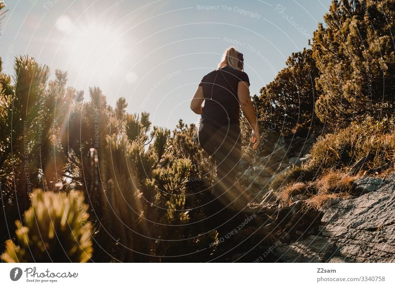 Hiking on the Brecherspitz crusher tip sharpened Woman sunshine Back-light shrubby ascent sunbeam Young woman Warmth Autumn Alps Sports Athletic Sky