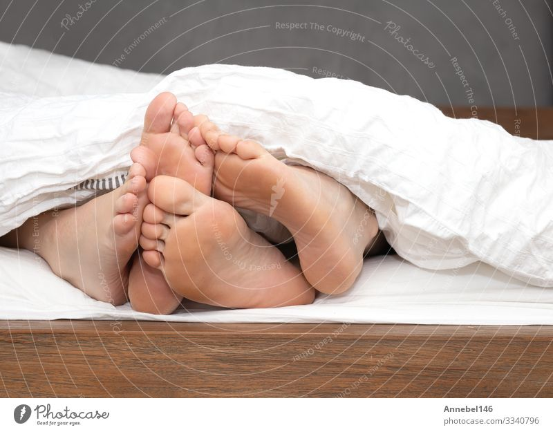 close up feet of a couple under the white sheets blanket in bed, Body Relaxation Leisure and hobbies Bedroom Human being Woman Adults Family & Relations Couple
